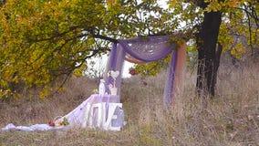 Γαμήλια οργάνωση στον κήπο, πάρκο Γαμήλια τελετή στο πάρκο Γαμήλιος πίνακας κάτω από ένα δέντρο με το όμορφο ντεκόρ απόθεμα βίντεο