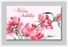 Γαμήλια πρόσκληση με ένα watercolor peonies Η χρήση καρτών για το πέρασμα τροφής, προσκλήσεις, ευχαριστεί εσείς λαναρίζει διάνυσμ ελεύθερη απεικόνιση δικαιώματος