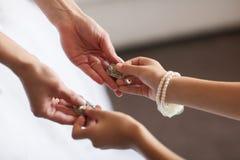 Γαμήλια σκουλαρίκια σε ετοιμότητα θηλυκό, παίρνει τα σκουλαρίκια, νύφη πρωινού αμοιβών, άσπρο φόρεμα Στοκ Φωτογραφία