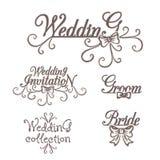 Γαμήλια συλλογή Πρόσκληση νεόνυμφων νυφών Στοκ Εικόνα
