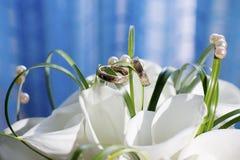 Γαμήλιες δαχτυλίδια και ανθοδέσμη Στοκ φωτογραφίες με δικαίωμα ελεύθερης χρήσης
