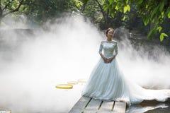 Γαμήλιες φωτογραφίες της όμορφης νύφης στοκ εικόνα