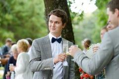 Γαμήλιοι φιλοξενούμενοι που ψήνουν τον ευτυχή νεόνυμφο Στοκ εικόνα με δικαίωμα ελεύθερης χρήσης