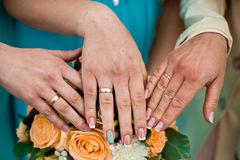 Γαμήλιοι φλοιοί Στοκ Εικόνες