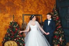 γαμήλιος χειμώνας νεόνυμφων νυφών υπαίθρια Νύφη και νεόνυμφος εραστών στη διακόσμηση Χριστουγέννων HGroom και νύφη από κοινού αγκ Στοκ Εικόνες