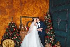 γαμήλιος χειμώνας νεόνυμφων νυφών υπαίθρια Νύφη και νεόνυμφος εραστών στη διακόσμηση Χριστουγέννων HGroom και νύφη από κοινού αγκ Στοκ εικόνα με δικαίωμα ελεύθερης χρήσης