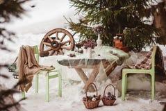 γαμήλιος χειμώνας νεόνυμφων νυφών υπαίθρια στοκ φωτογραφία με δικαίωμα ελεύθερης χρήσης