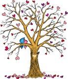 Γαμήλιο δέντρο με το ζεύγος καρδιών και πουλιών ελεύθερη απεικόνιση δικαιώματος