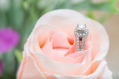 Γαμήλιο δαχτυλίδι Στοκ Φωτογραφίες