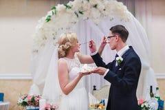 Γαμήλιο γλυκό κέικ Στοκ Εικόνες