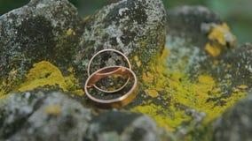 γαμήλιο λευκό δαχτυλιδιών ανασκόπησης ανοιχτό απόθεμα βίντεο