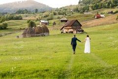 Γαμήλιο ζεύγος σε έναν πράσινο τομέα στοκ εικόνα