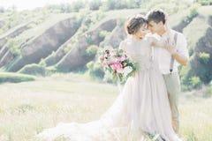 Γαμήλιο ζεύγος στη φύση νύφη και νεόνυμφος που αγκαλιάζουν στο γάμο στοκ εικόνα με δικαίωμα ελεύθερης χρήσης