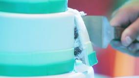 Γαμήλιο κέικ απόθεμα βίντεο