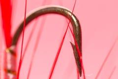 Γαντζωμένος στην αλιεία μυγών κλείστε Στοκ Φωτογραφία