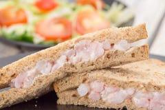 Γαρίδα ή σάντουιτς και σαλάτα γαρίδων Στοκ φωτογραφία με δικαίωμα ελεύθερης χρήσης