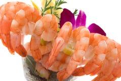 γαρίδες κοκτέιλ Στοκ Φωτογραφία