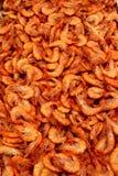 γαρίδες Στοκ Φωτογραφία