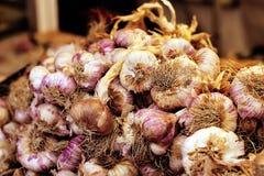 Γαρίφαλα σκόρδου στην αγορά της Προβηγκίας στοκ φωτογραφία με δικαίωμα ελεύθερης χρήσης