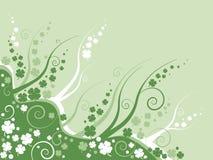 γαρίφαλο floral Στοκ φωτογραφία με δικαίωμα ελεύθερης χρήσης