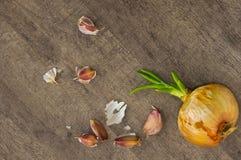 Γαρίφαλα κρεμμυδιών και σκόρδου Στοκ φωτογραφία με δικαίωμα ελεύθερης χρήσης
