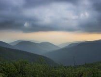 Γαρίφαλο βουνών Catskill Στοκ Εικόνα