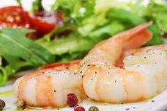 Γαρίδες και σαλάτα Στοκ Εικόνες