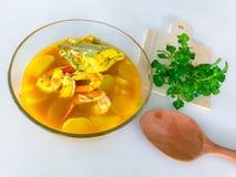 Γαρίδες και ψάρια με το τεμαχισμένο άσπρο ραδίκι στην κίτρινη ξινή και πικάντικη σούπα από τη νότια ταϊλανδική κουζίνα στοκ εικόνες