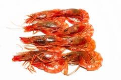 Γαρίδες που μαγειρεύονται κόκκινες Στοκ Εικόνες