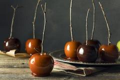 Γαστρονομικά γλυκά φανταχτερά μήλα καραμελών Στοκ εικόνα με δικαίωμα ελεύθερης χρήσης