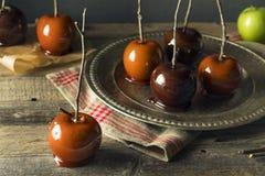 Γαστρονομικά γλυκά φανταχτερά μήλα καραμελών Στοκ εικόνες με δικαίωμα ελεύθερης χρήσης