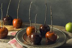 Γαστρονομικά γλυκά φανταχτερά μήλα καραμελών Στοκ φωτογραφία με δικαίωμα ελεύθερης χρήσης