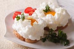 Γαστρονομικά σάντουιτς τροφίμων με την κινηματογράφηση σε πρώτο πλάνο Orsini αυγών οριζόντιος Στοκ εικόνα με δικαίωμα ελεύθερης χρήσης