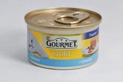 Γαστρονομικά χρυσά δοχεία τροφίμων κατοικίδιων ζώων στο άσπρο υπόβαθρο Στοκ εικόνα με δικαίωμα ελεύθερης χρήσης