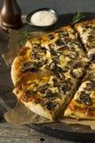 Γαστρονομική σπιτική πίτσα μανιταριών Στοκ φωτογραφία με δικαίωμα ελεύθερης χρήσης
