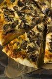 Γαστρονομική σπιτική πίτσα μανιταριών Στοκ εικόνα με δικαίωμα ελεύθερης χρήσης