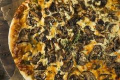 Γαστρονομική σπιτική πίτσα μανιταριών Στοκ φωτογραφίες με δικαίωμα ελεύθερης χρήσης