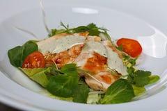 γαστρονομικό γεύμα Στοκ φωτογραφία με δικαίωμα ελεύθερης χρήσης