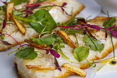 γαστρονομικό γεύμα Στοκ φωτογραφίες με δικαίωμα ελεύθερης χρήσης