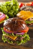 Γαστρονομικό Burger τυριών σε έναν Pretzel ρόλο στοκ εικόνα