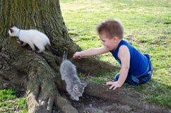 Γατάκια αγοριών και κατοικίδιων ζώων Στοκ φωτογραφία με δικαίωμα ελεύθερης χρήσης