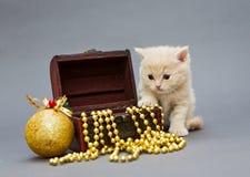 Γατάκι Βρετανοί με τα παιχνίδια Χριστουγέννων Στοκ φωτογραφία με δικαίωμα ελεύθερης χρήσης
