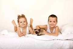 γατάκι κατσικιών σπορείω&nu Στοκ εικόνες με δικαίωμα ελεύθερης χρήσης