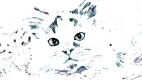 Γατάκι με μια μινιμαλιστική επίδραση διανυσματική απεικόνιση