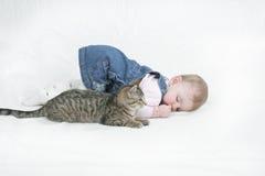 γατάκι που χαλαρώνουν Στοκ φωτογραφίες με δικαίωμα ελεύθερης χρήσης
