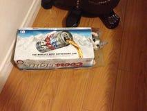 Γατάκι στο ελαφρύ κιβώτιο Coors Στοκ εικόνες με δικαίωμα ελεύθερης χρήσης