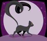 γατάκι noir Στοκ Εικόνες