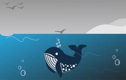 γαλάζια φάλαινα Στοκ Φωτογραφία