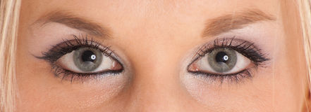 Γαλαζοπράσινα μάτια Στοκ Φωτογραφίες
