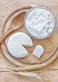 Γαλακτοκομικά προϊόντα και σιτάρια Στοκ εικόνα με δικαίωμα ελεύθερης χρήσης